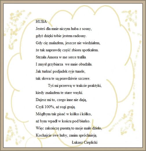 HUBA 6