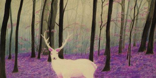 """2015-06-01_1 """"Leśne opowieści""""  -  rozstrzygnięcie konkursu plastycznego w Tucholi"""