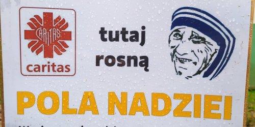 """02-05-2021 FINAŁ AKCJI """"POLA NADZIEI"""" W ZSL W ZAGNAŃSKU"""