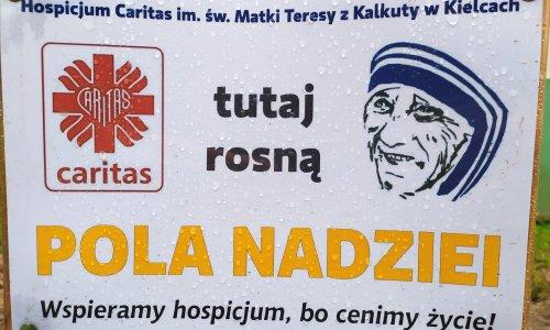 """Finał akcji """"Pola nadziei"""" w ZSL w Zagnańsku"""
